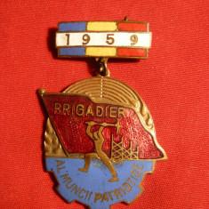 Insigna -Insemn - Brigadier al Muncii Patriotice ,h= 4 cm ,1959