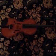 Vioara Reghin originala 1972
