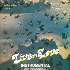 Rising Sound - Live And Love (Instrumental) - Divina 27901 (Vinyl) - Muzica Dance electrecord, VINIL