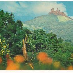 Carte postala(marca fixa)-ARAD -Siria-ruinele cetati - Carte Postala Crisana dupa 1918, Necirculata, Printata
