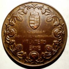 5.180 MEDALIE ROMANIA UNGARIA CLUJ CAMERA DE COMERT 52mm - Medalii Romania