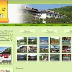 Site pentru pensiune - Solutii business