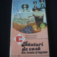 DORINA MARTIN * MIHAI MARTIN - BAUTURI DE CASA DIN FRUCTE SI LEGUME