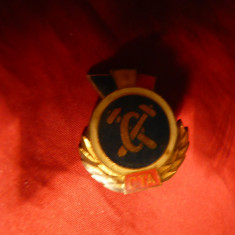 Insigna Militara CTA -Tehnica, h= 2, 5 cm