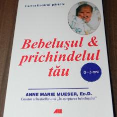 ANNE MARIE MUESER - BEBELUSUL SI PRICHINDELUL TAU 0 - 3 ANI. CARTEA FIECARUI PARINTE. CARTE NOUA
