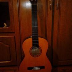 Chitara clasica Ariana