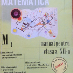 MATEMATICA MANUAL PENTRU CLASA A XII-A M1 - Marius Burtea, Georgeta Burtea - Manual scolar, Clasa 12