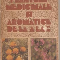(C4413) PLANTELE MEDICINALE SI AROMATICE DE LA A LA Z DE OVIDIU BUJOR SI MIRCEA ALEXAN, EDITURA RECOOP, 1984 - Carte tratamente naturiste