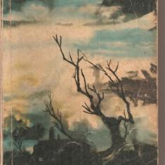 (C4430) LA RASCRUCE DE VINTURI DE EMILY BRONTE, ELU, 1962, TRADUCERE DE HENRIETTE YVONNE STAHL, PREFATA DE ANA CARTIANU