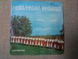Ana pacatius muzica populara romaneasca banateana disc vinyl single, VINIL, electrecord
