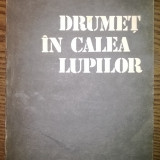 Carte - Nicolae Dragos, Mihai Stoian - Drumet in calea lupilor - Roman, Anul publicarii: 1987