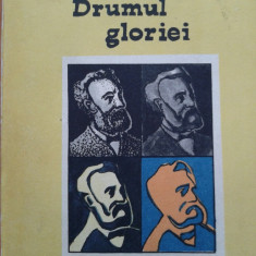 DRUMUL GLORIEI - Jules Verne, Alta editura