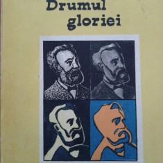 DRUMUL GLORIEI - Jules Verne - Roman