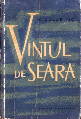 VANTUL DE SEARA de NICOLAE TIC foto