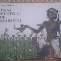 TAINA MUNTELUI DE ALABASTRU - Anca Balaci