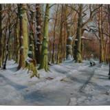 Peisaj de iarna / ulei pe panza / 60x50cm - Pictor roman, Peisaje, Impresionism