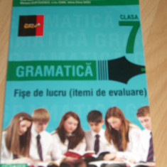 Limba romana clasa a VII-a - culegere gramatica - Manual scolar paralela 45, Clasa 7, Paralela 45