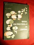 D.M.Mateescu -Ghidul Cultivatorului de Ciuperci 1982