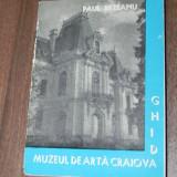 PAUL REZEANU - MUZEUL DE ARTA CRAIOVA GHID - Album Pictura