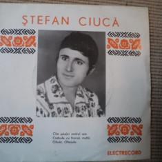 Stefan ciuca disc vinyl single Muzica Populara electrecord voinescu cate pasari codur are, VINIL
