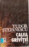 CALEA GRIVITEI de TUDOR STEFANESCU