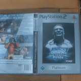Smackdown Here Comes The Pain joc PS2