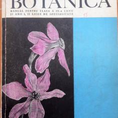 BOTANICA - N. Salageanu, Tr. Tretiu, M. Baldovin - Carte Biologie