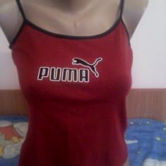 Top /  Maiou Puma