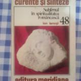D8 Ion Ianosi - Sublimul in spiritualitatea romaneasca - Istorie