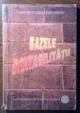 Carte - Cicilia Ionescu - Bazele contabilitatii, Alta editura