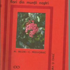 AL.BELDIE, C.PRIDVORNIC - FLORI DIN MUNTII NOSTRI (N9) by DARK WADDER, Alta editura, 1969