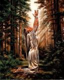 236.Poster - Indian pray 33,02-48,26