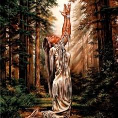 236.Poster - Indian pray 33, 02-48, 26 - Afis