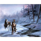 232.Poster - Indian forest winter 33,02 - 48,26