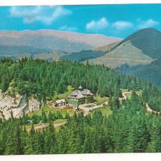 @carte postala(marca fixa)-SUCEAVA-Rarau-cabana - Carte Postala Moldova dupa 1918, Circulata, Printata