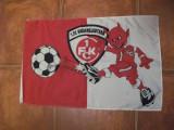 STEAG SUPORTER FC KAISERSLAUTERN