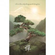 70.Poster - ZEN MOUNTAIN 40, 64x50, 8 - Afis