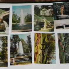 LOT 15 CARTI POSTALE FANTANI ARTEZIENE PETRODVORETS RUSIA URSS.necirculate. ilustrate