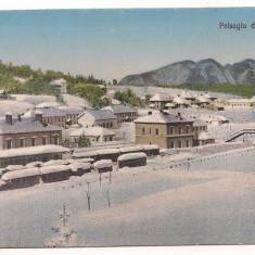 Carte postala(ilustrata)-PREDEAL peisaj de iarna GARA
