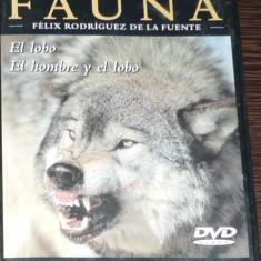 DVD VIDEO - GRAN ENCICLOPEDIA DE LA FAUNA - EL LOBO. EL HOMBRE Y EL LOBO - Ebook