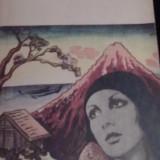 Erwin Wickert - O iarna pe muntele fuji