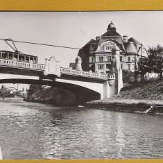 TIMISOARA TRAMVAI PE POD RPR - Carte Postala Banat dupa 1918, Necirculata