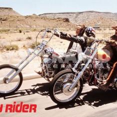 EASY RIDER - MAXI POSTER (61x91, 5cm) - Film Colectie, Alte tipuri suport, Altele