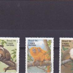 Fauna, maimute, Brazilia. - Timbre straine, America Centrala si de Sud