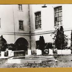 TIMISOARA MUZEUL BANATULUI RPR - Carte Postala Banat dupa 1918, Necirculata