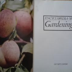 Encyclopedia of gardening ghid gradinarit legume fructe flori ilustrat engleza - Carte gradinarit