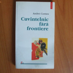 H2 Andrei Cornea - Cuvintelnic fara frontiere - Roman, Polirom, Anul publicarii: 2002