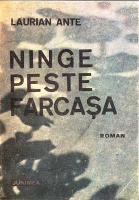 NINGE PESTE FARCASA de LAURIAN ANTE foto