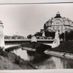 TIMISOARA 1947 (B) - Carte Postala Banat dupa 1918, Necirculata, Fotografie