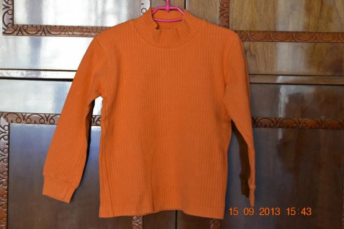 Helanca portocalie foto mare